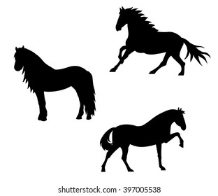 Black horse silhouette collection. Elements for design on white background.