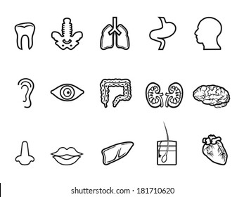 black human anatomy outline icon