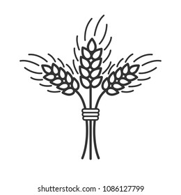 Black isolated outline icon of sheaf of wheat on white background. Line Icon of sheaf of wheat.