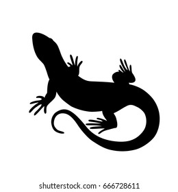Black isolated silhouette of lizard on white background.