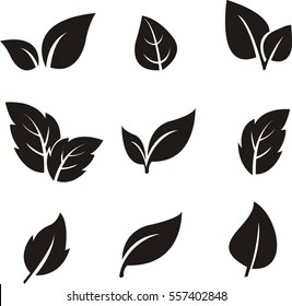 black leaf icon on white background