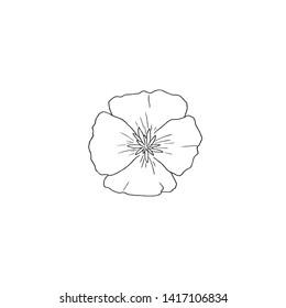 Black Line Art for California Poppy Flower in Vector Line. California Poppy or Eschscholzia californica, golden poppy, California sunlight, cup of gold