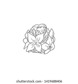 Black Line Art Daphne odora Flower in Hand Drawing Vector Art. Winter Daphne