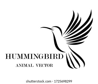 Black line art Vector illustration on a white background of flying hummingbird. Suitable for making logos