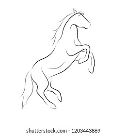 Black line horse on white background. Vector icon