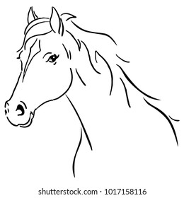 Black line horse sketch vector illustration