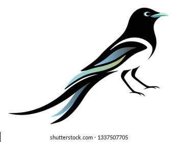 Black Magpie vector