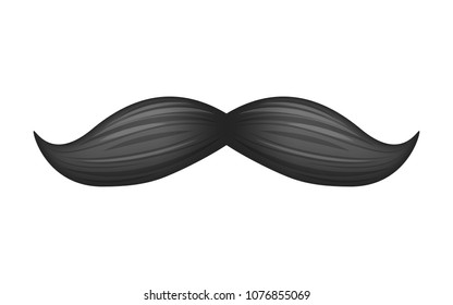 Black moustaches vector illustration. Gentleman symbol. Realistic icon