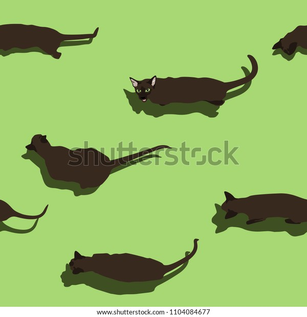 Black oriental cat seamless pattern on green background. Flat style image with shadow. Funny pets walking. Vector illustration. Animal cartoon print, wallpaper and banner.