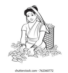 black outline Sri Lankan tea plucking lady with smile-vector drawing