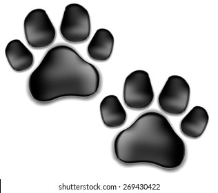 black pads of a cat with claws.