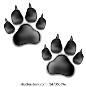 black pads of a cat with claws. traces of a kitten. Isolated On White Background. Vector Illustration.