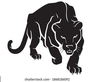 Black Panther Crouching Forward, Front View Animal Illustration