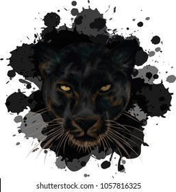 Black Panther on grunge background - vector illustration