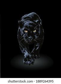 black panther walking in shadow illustration