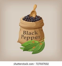 Black pepper corn in the bag. Vector illustration