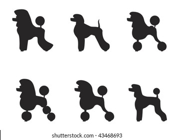poodle silhouette images stock photos vectors shutterstock rh shutterstock com free french poodle clipart free french poodle clipart