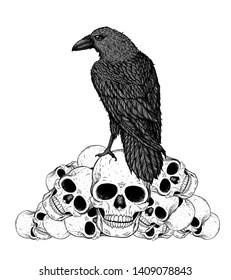 Black raven sits on the skulls. Skull and raven hand drawn illustration. Tattoo vintage print. Skull hand drawn print. Tattoo design. Pile of skulls and raven.