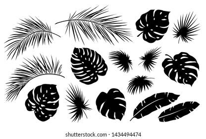 black realistic tropical jungle palm leaves silhouettes set on white background