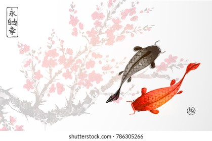 Black and red koi carps on sakura blossom background. Traditional oriental ink painting sumi-e, u-sin, go-hua. Contains hieroglyphs - eternity, freedom, happiness, joy