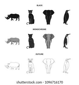 Black rhinoceros, panther wild cat, African animal elephant, imperial penguin. Wild animals set collection icons in black,monochrome,outline style vector symbol stock illustration web.