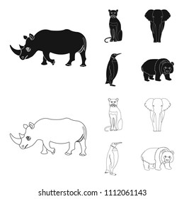 Black rhinoceros, panther wild cat, African animal elephant, imperial penguin. Wild animals set collection icons in black,outline style vector symbol stock illustration web.