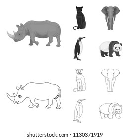 Black rhinoceros, panther wild cat, African animal elephant, imperial penguin. Wild animals set collection icons in outline,monochrome style vector symbol stock illustration web.