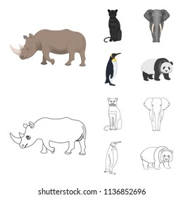 Black rhinoceros, panther wild cat, African animal elephant, imperial penguin. Wild animals set collection icons in cartoon,outline style vector symbol stock illustration web.