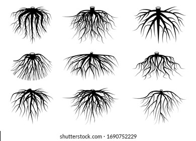 black roots of different shapes