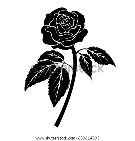 Black Rose Illustration Tattoo On White Stock Vector Royalty Free
