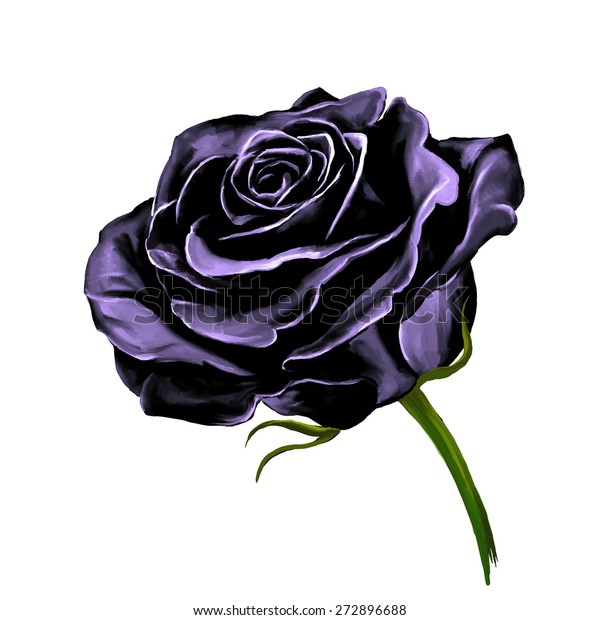 8cfaa229c Black Rose Vector Illustration Hand Drawn Stock Vector (Royalty Free ...