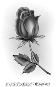 Black rosebud