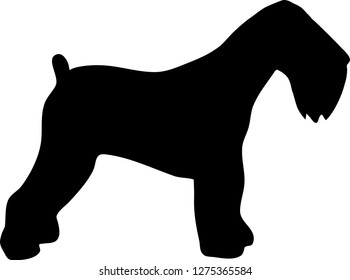 Black Russian Terrier Vector Photos 179 Black Russian