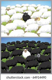 Black sheep in white flock and white sheep in black flock.