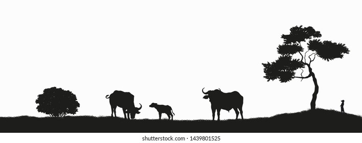 Black silhouette of african buffalo on white background. Isolated scene with bull family. Landscape with wild african animals. Scene of savannah wildlife. Travel poster of Africa. Vector illustration