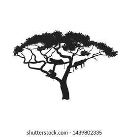 Black silhouette of african tree with lions on white background. Isolated image of savannah animals. Forest landscape of Africa. Sleeping lionesses. Vector illustration