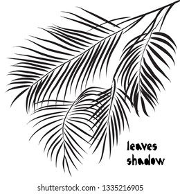 Black silhouette areca palm tropical leaves isolated on white background. Shadow pattern. Exotic design for vintage fabric textile, fashion, print, poster. Vector illustrations