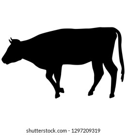 Black silhouette of cash cow on white background
