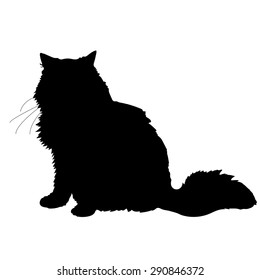 A black silhouette of a cat
