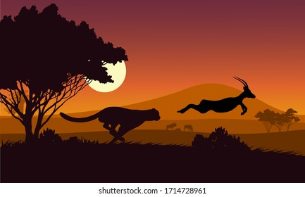 Black silhouette. The cheetah is chasing the Impala field in an African safari.