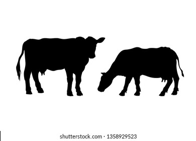 Black silhouette of cow. Isolated image of farm cattle. Domestic animal icon. Isolated image. Butcher shop logo. Milk label. Vector illustration