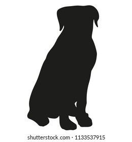 Black silhouette of a dog on a white background. Rottweiler. Vector illustration.