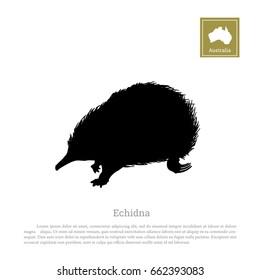 Black silhouette of echidna on a white background. Animals of Australia. Vector illustration.