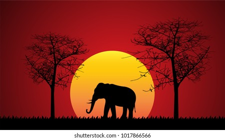 Black silhouette of elephant, wild nature. Vector illustration