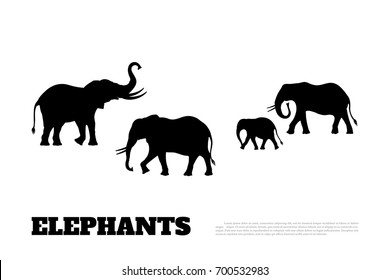 Black silhouette of a family of elephants on a white background. African animals. Vector illustration