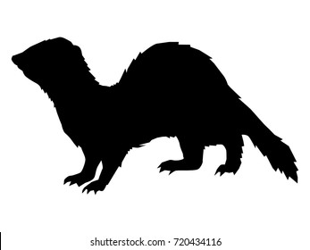 black silhouette of ferret, side view