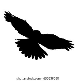 Black silhouette of flying falcon. Vector illustration