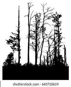 black silhouette of forest. deciduous trees without leaves. the illustration is seamless. eps 8