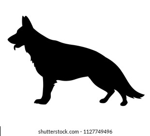 Black silhouette of German Shepherd dog on a white background. Vector illustration