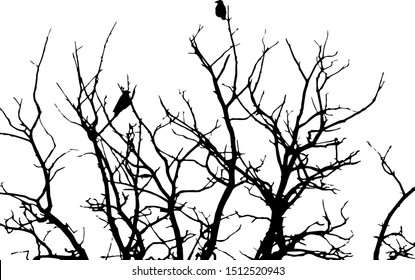 black silhouette for halloween, crows sitting on a tree in winter or autumn forest, dry trees, doodle style, vector illustration